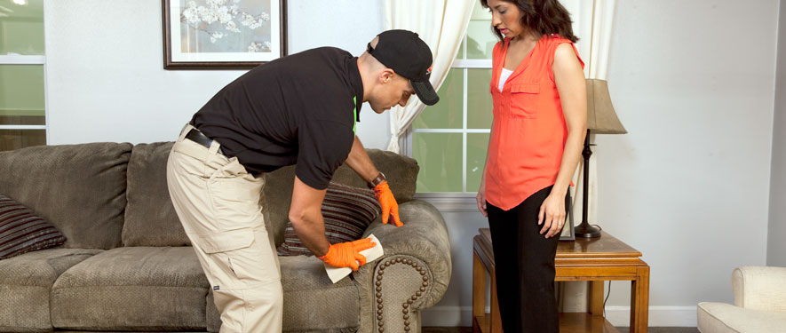 Glen Burnie, MD carpet upholstery cleaning